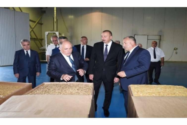 Prezident İlham Əliyev Zaqatalada tütün emalı zavodunun fəaliyyəti ilə tanış olub